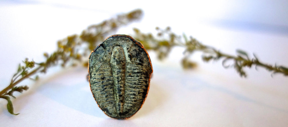 Trilobite and Copper Ring Wholesale