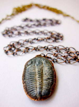 Real Trilobite Fossil Copper Necklace