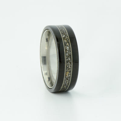 SALE RING -  Titanium, Blackwood, Meteorite, & Guitar Strings - Size 10