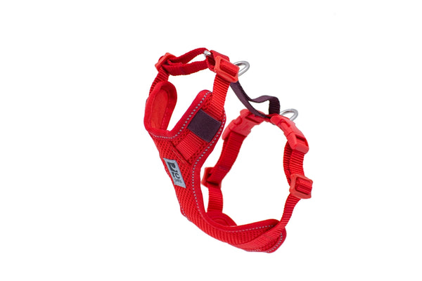 RC PETS MOTO CONTROL HARNESS-GOJI BERRY/BURGUNDY
