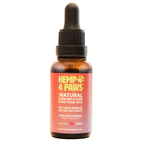 HEMP 4 PAWS : Hemp Seed Oil XLarge Breed 1200MG/30ML