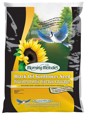 Armstrong : Morning Melodies Black Oil Sunflower Seeds 25LB
