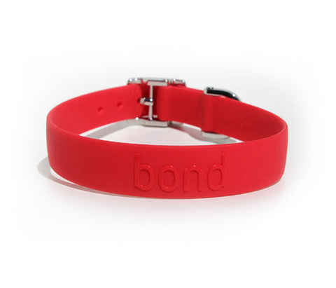 BOND PET PRODUCT COLLAR