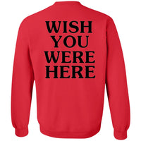 Astroworld Sweater Wish You Were Here Youth Crewneck Sweatshirt - Tina Store