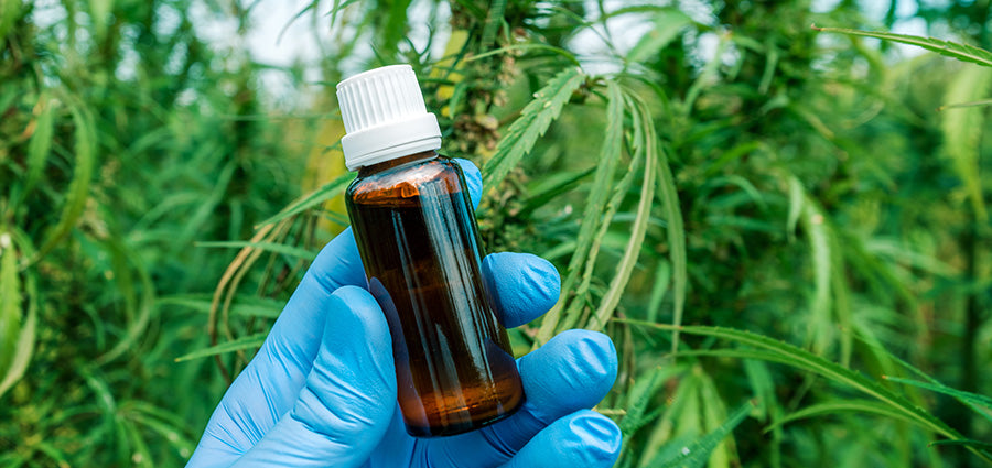 cbd oil bottle held by scientist. buy the best cbd beauty products online USA.