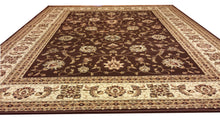 D601 Brown Area Rug - Rug Tycoon
