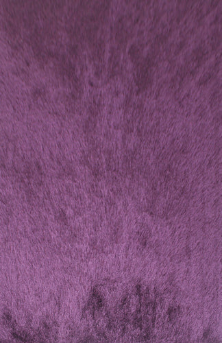 EN0000 Purple Area Rug - Rug Tycoon