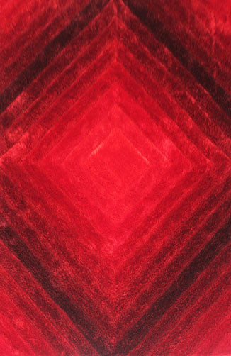 IS9 Red Area Rug - Rug Tycoon
