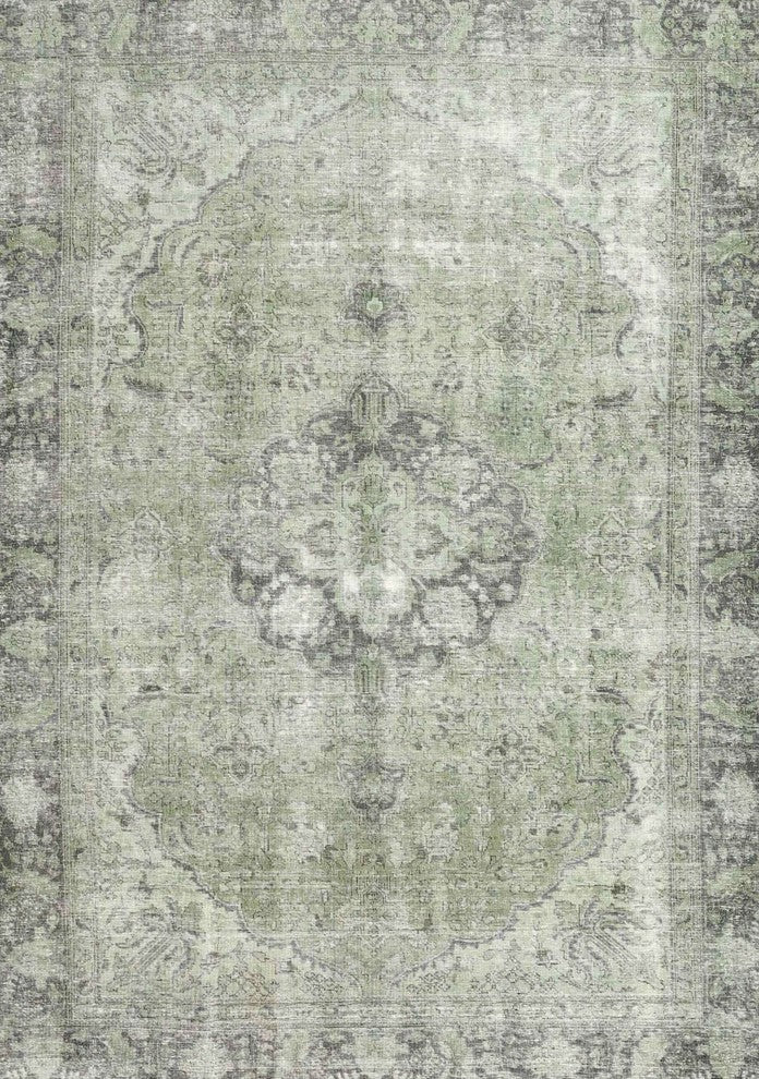 Traditional 4317 Area Rug, 2'0