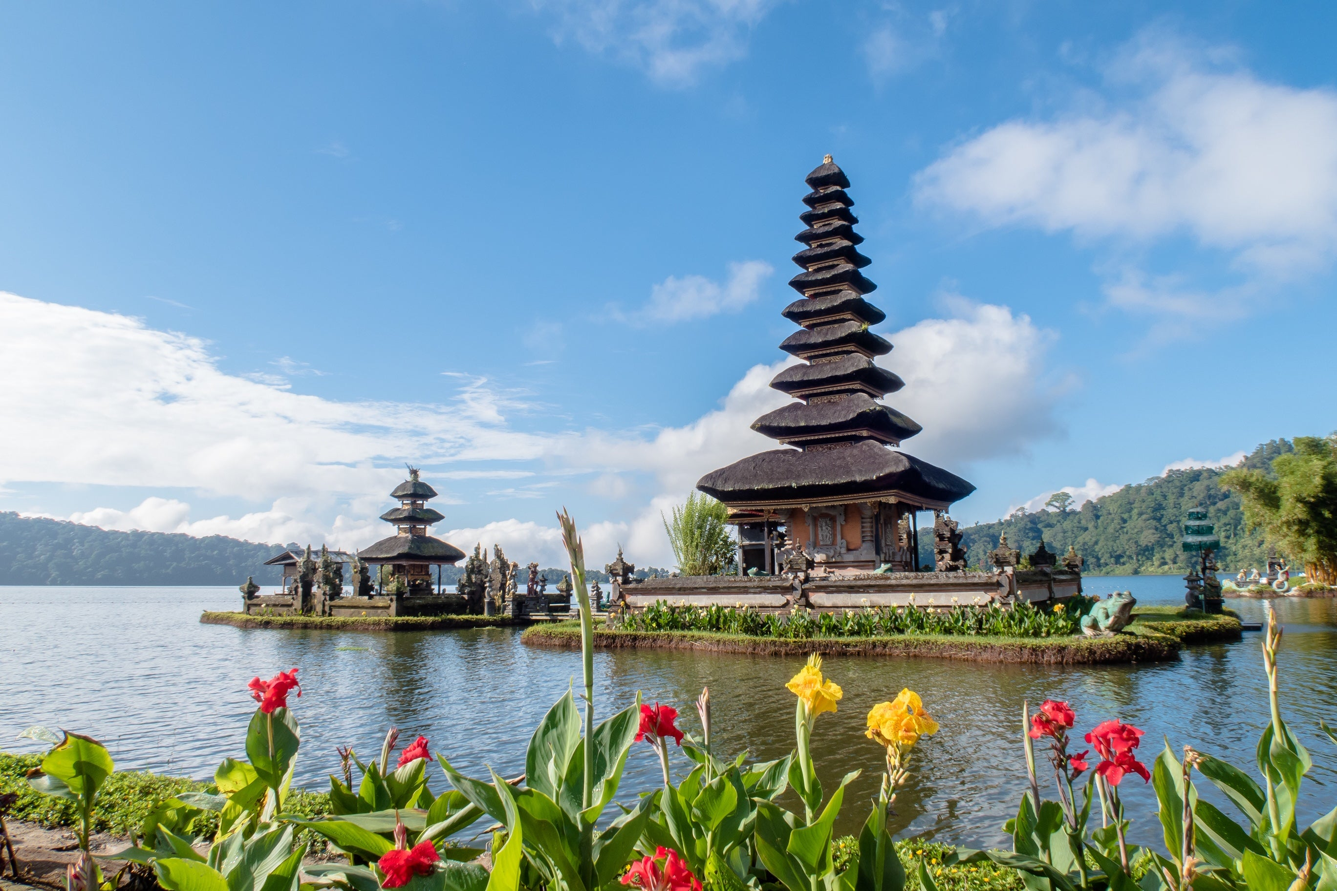 Balinese Wellness Retreat - Yoga and Arts - 6 days, 5 nights, January 25-30 (CHINESE NEW YEAR BREAK!)