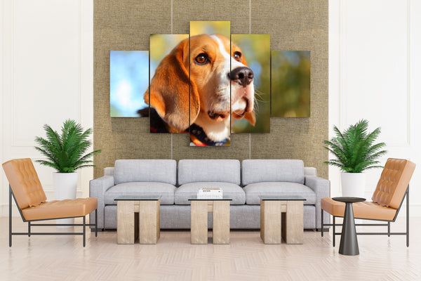 English Beagle - 5 piece Canvas