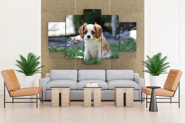 Spaniel Puppy - 5 piece Canvas
