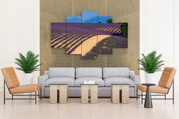 France Fields Lavandula Provence - 5 piece Canvas - EpicKanvas