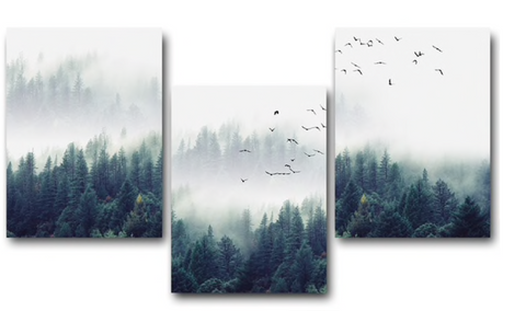 3 Pc Framed Peace & Poise Sounding Nature And Birds Flocking Together Canvas Art for your Home And Office Beauty - EpicKanvas
