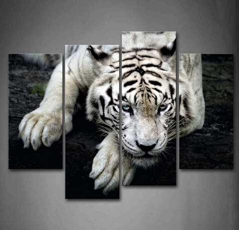 4PCS White Tiger Resting Artwork - 4 piece Framed Canvas 21st Century Friendly Tiger For Home/Office Decor