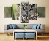 Owl Looking back  - 5 piece Canvas