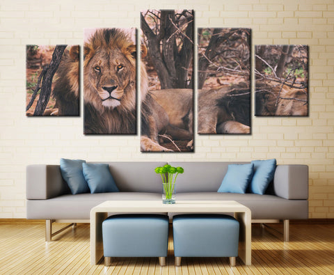 Lion in Jungle - 5 piece Canvas
