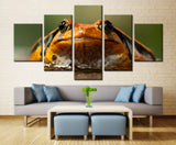 Toad Looking At Ya  - 5 piece Canvas - EpicKanvas