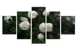 White Rose - 5 piece Canvas - EpicKanvas