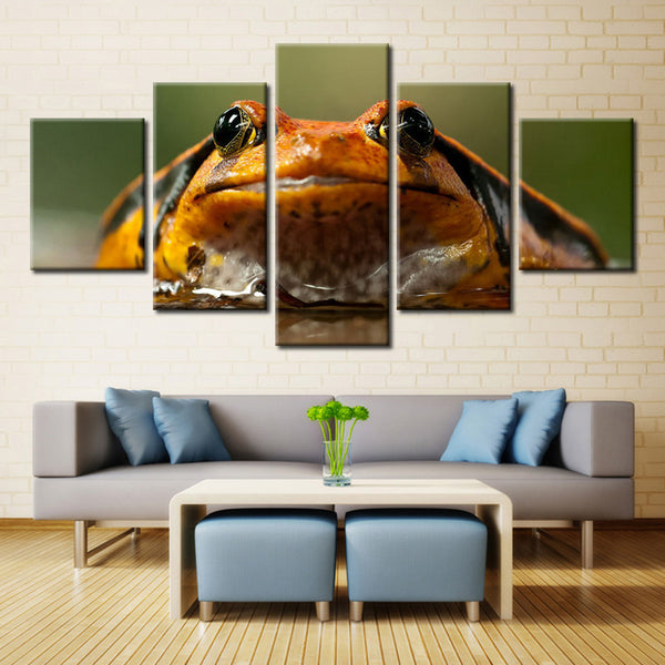 Toad Looking At Ya  - 5 piece Canvas