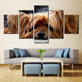 Cute Fur Dog - 5 piece Canvas