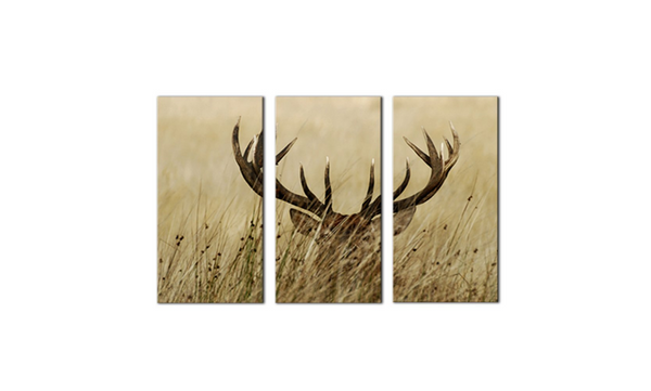 3 Pieces Framed Deer Stag With Long Antler In The Bushes Canvas-Animal Artwork For Home Decor - EpicKanvas