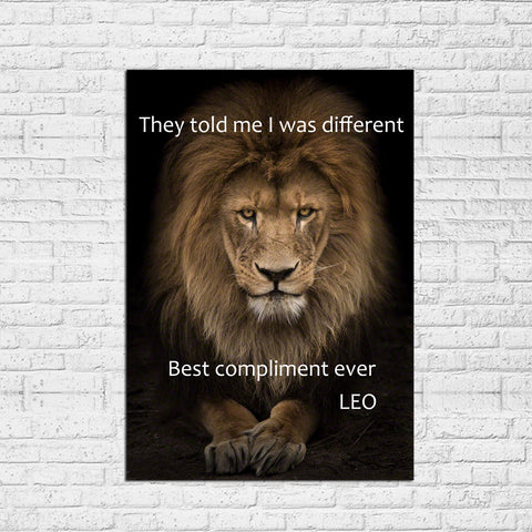 "1 Piece Lion Compliment Canvas - One Piece Lion ""You are Different"" Artwork For Home/Office Decor"