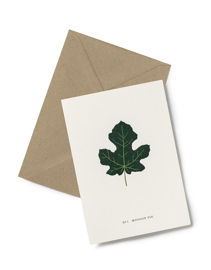 Greeting Card | Mission Fig