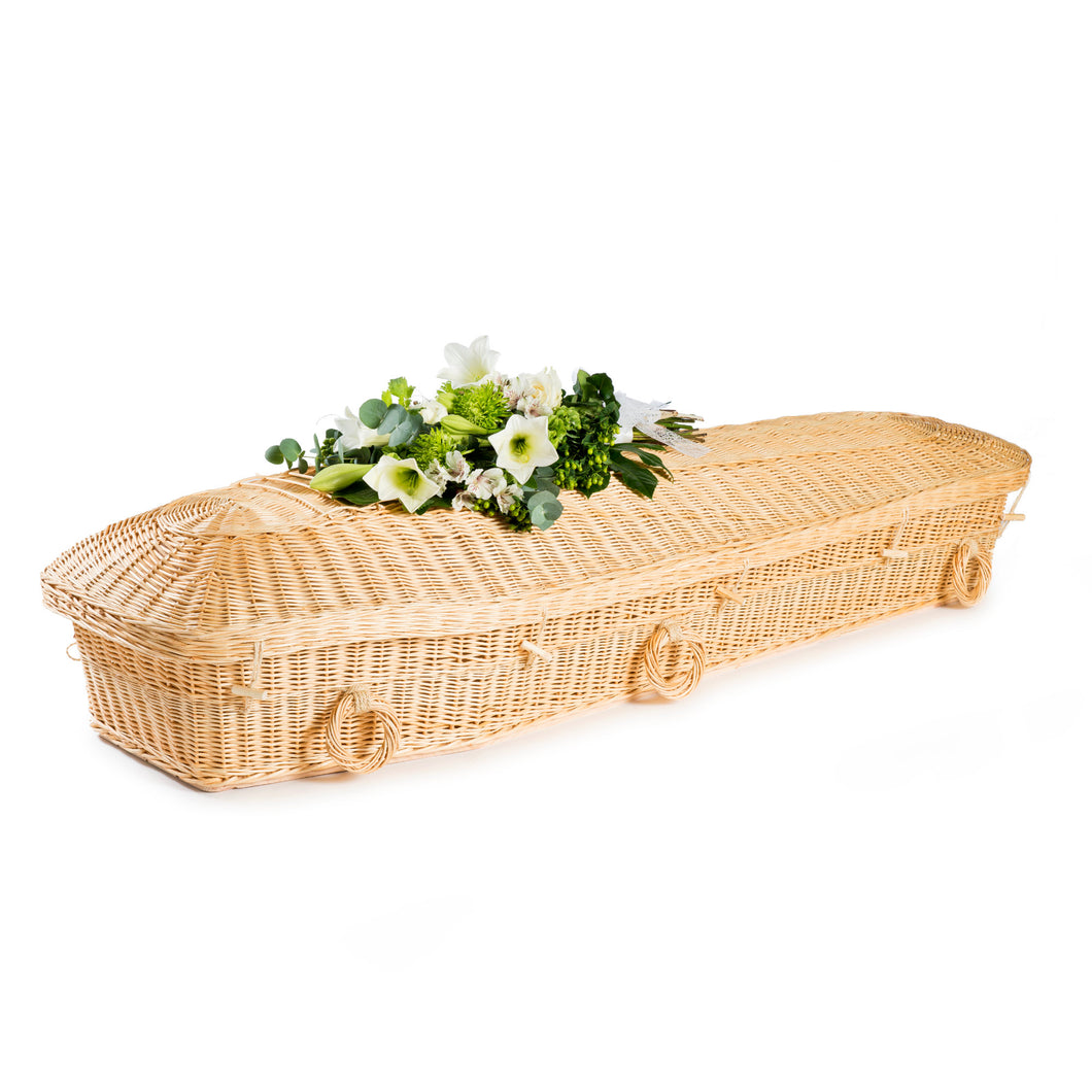White Willow Pod Coffin - Free Delivery, thinkwillow.com