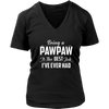 Being A Pawpaw Is The Best Job I've Ever Had T-Shirt