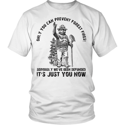 Seriously We've Been Defunded It's Just You Now t-shirt