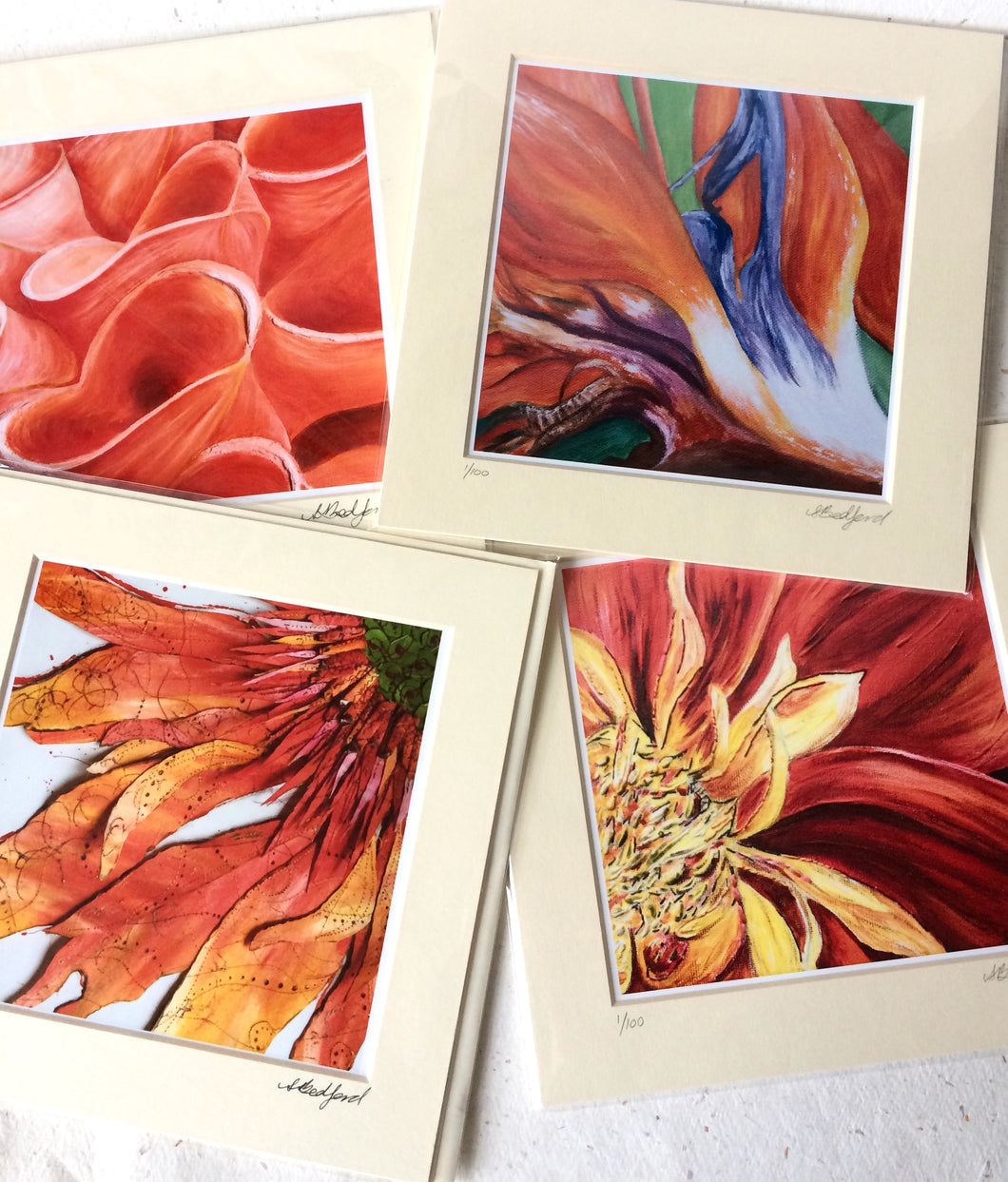 Art - Medium Floral Prints (Orange)