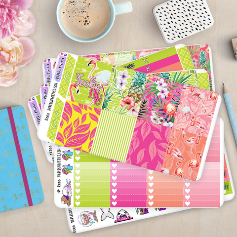 [K008] Looking Fly Erin Condren Weekly Vertical Kit