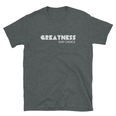 GREATNESS IS BY CHOICE T-SHIRT - Beats 4 Hope
