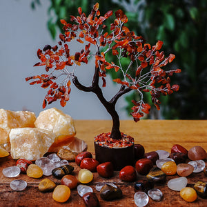 Carnelian Tree - Medium Brown