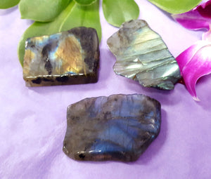 Labradorite Slice medium 3pc
