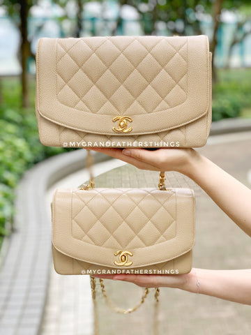 small and medium size vintage chanel diana