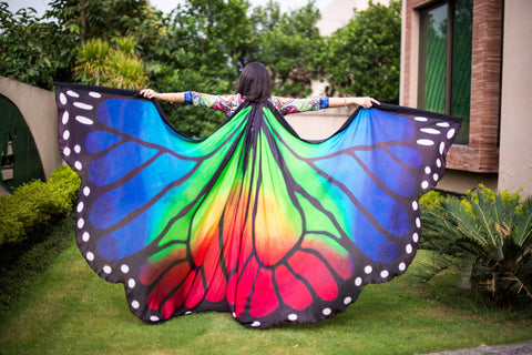 Butterfly Silk Wings Rainbow