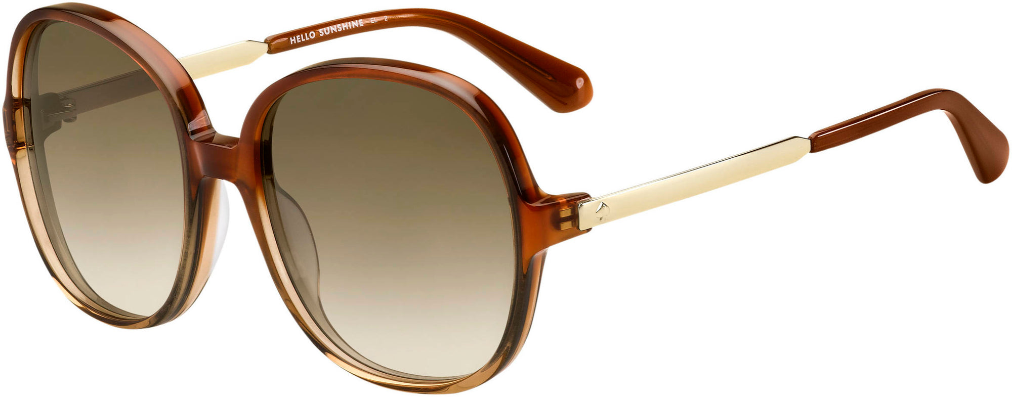 Givenchy ADRIYANNA/S Oval Modified Sunglasses 009Q-009Q  Brown (HA Brown Gradient)