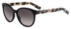 HUGO BOSS (HUB) Hg 0195/S Cat Eye/Butterfly Sunglasses 0YV4-Black Gray Havana