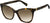 Adensco MARC 336/S Cat Eye/Butterfly Sunglasses 0086-0086  Dark Havana (HA Brown Gradient)