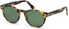 Tom Ford FT0522 Palmer Round Sunglasses 56N-56N - Havana/other / Green