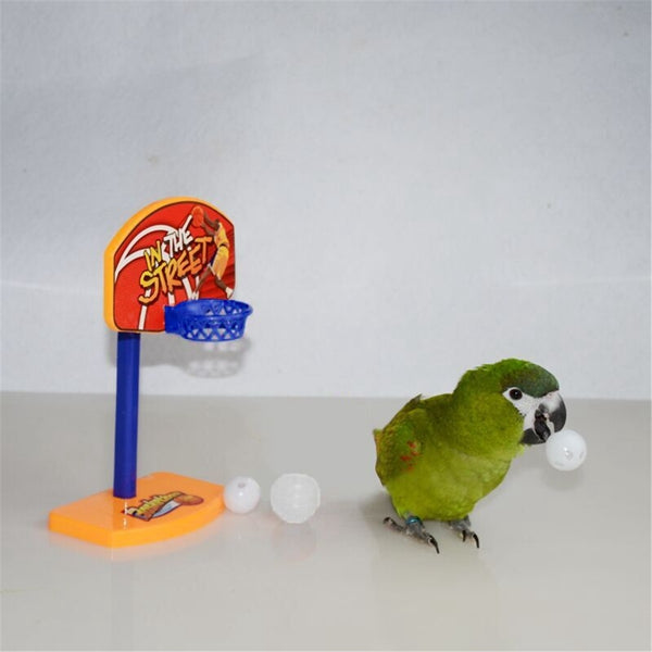 Bird/Parrot Basketball
