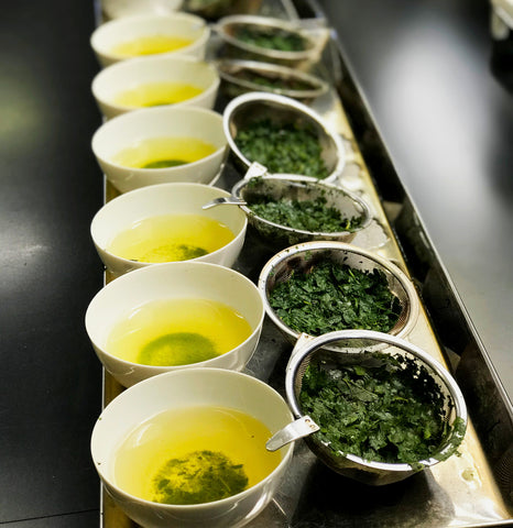 Tasting of tencha leaves.