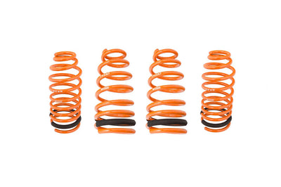 Megan Racing Lowering Springs for 2G DSM (MR-LS-ME9599)