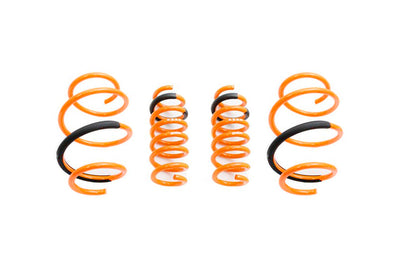 Megan Racing Lowering Springs for MKV Supra (MR-LS-TSU20)