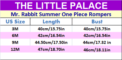 Mr. Rabbit Summer One Piece Rompers - Little Palace Store