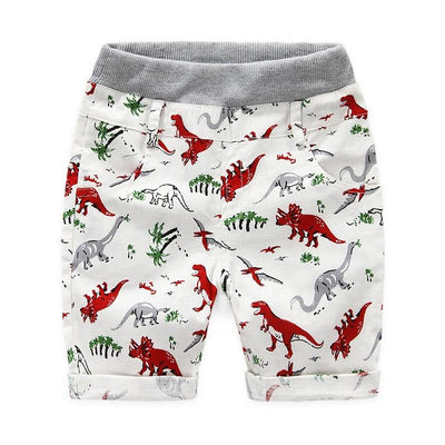 The Dinosaur Trousers - Little Palace Store