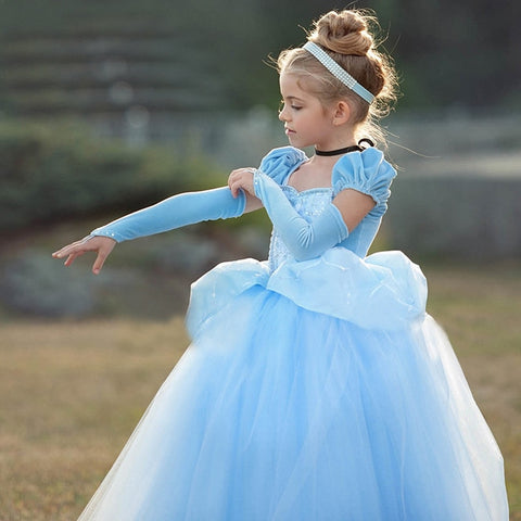 Cinderella Dress up Cosplay Costumes Kids Puff Sleeve Embroidery - Christmas Birthday Princess Dress