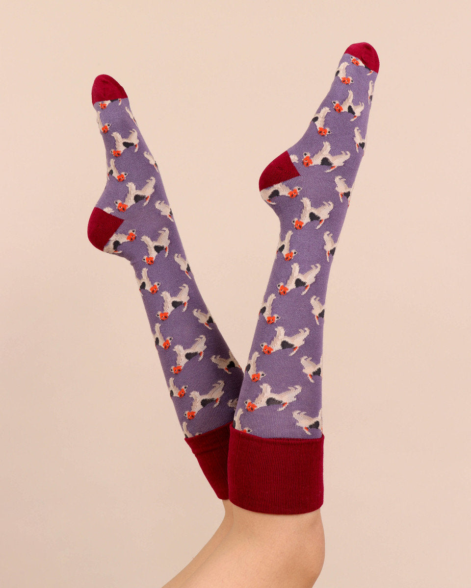Powder Fox Terrier Boot Socks - Lavender